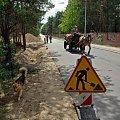 Przy cmentarzu w izabelinie #Izabelin #pies #wóz #koń #ZnakDrogowy #ulica #mur #cmentarz #budowa