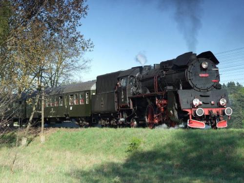 parowóz OL49, trasa Poznań - Wolsztyn, Wiry, 24.04.2009 #kolej #kolejnictwo #lokomotywa #lokomotywy #OL49 #parowozy #parowóz #PKP #pociąg #PojazdySzynowe #Szreniawa
