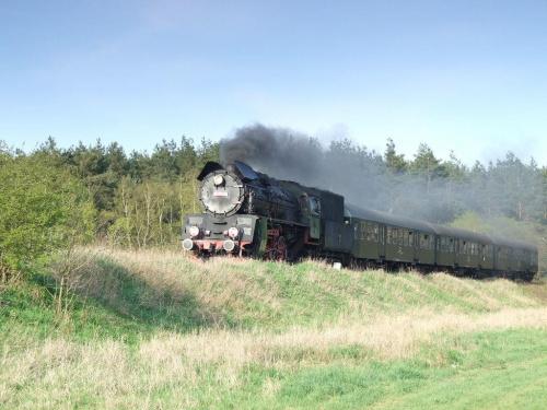 parowóz OL49, trasa Poznań - Wolsztyn, okolice Szreniawy,14.04.2009 #kolej #kolejnictwo #lokomotywa #lokomotywy #OL49 #parowozy #parowóz #PKP #pociąg #PojazdySzynowe #Szreniawa
