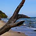 Gdynia-Dzika plaża. #Gdynia #okolice