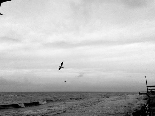 #morze #podróże #kaliningrad #zielenogorsk
