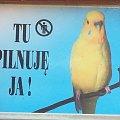 Strach się bać ;)) #ochrona #straznik #tabliczka