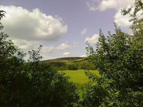 #krajobrazy #łąka