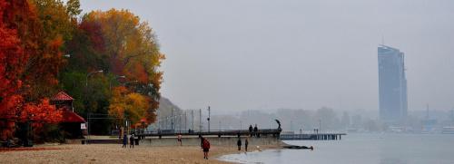 #plaża #Gdynia #jesień #las #krajobraz