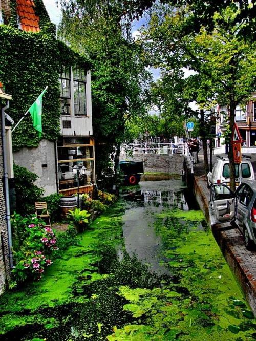Delft w Holandii