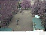 http://images39.fotosik.pl/326/b09ee8aeda73867fm.jpg