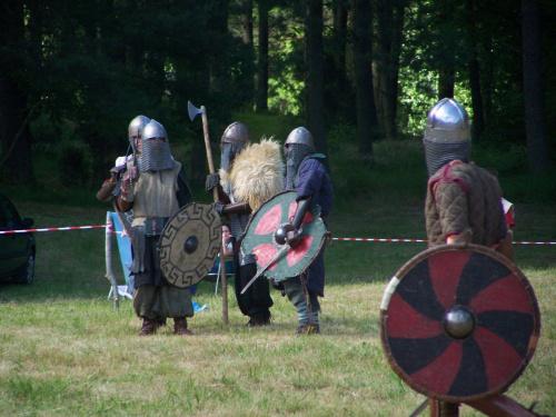 Wikingowie - Leśno 2010. #wiking #wojownik