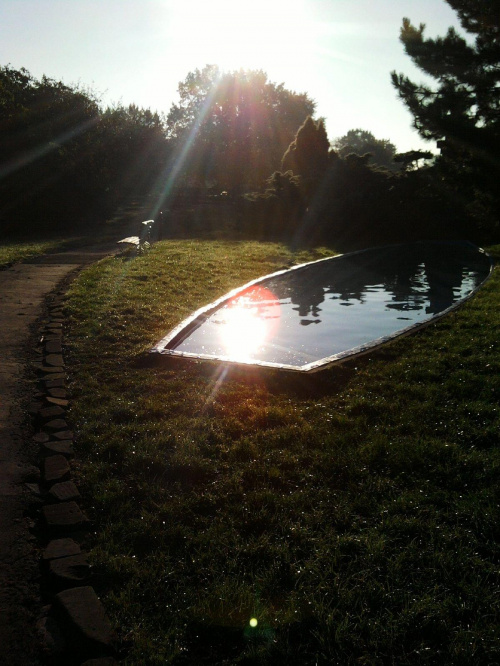 ..poranna kąpiel słoneczka...:-)))