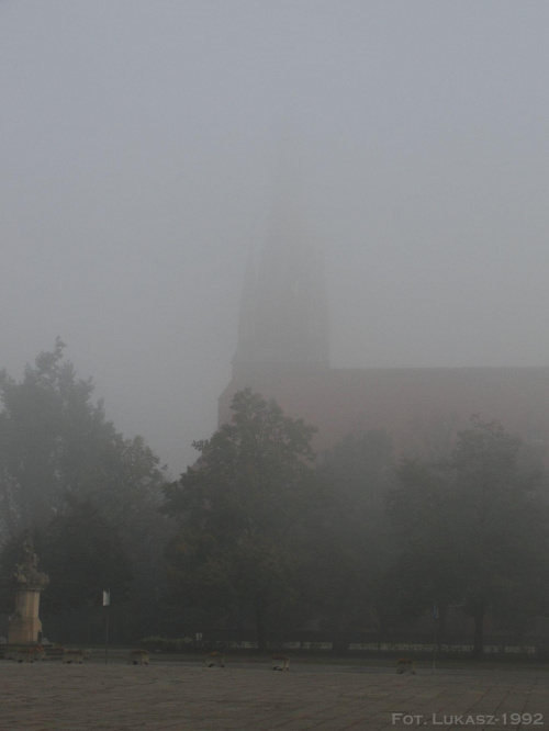 A mgłę....również uwielbiam, choć stwarza niebezpieczeństwo na drogach. Mgła - Racibórz, Śląskie #Mgła #fog #Racibórz #raciborz #Śląskie #slaskie #mleko #poranek #jesień