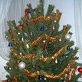 Drzewko Świąteczne Bożonarodzeniowe 2008/2009 #swieta #święta #hoinka #choinka #drzewko #wigilia #stół #StółWigilijny #lampki #BożeNarodzenie #christmas #karp #kolacja #bombki #ozdoby #kolęda