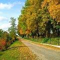 #jesień #sorux #piękno #droga