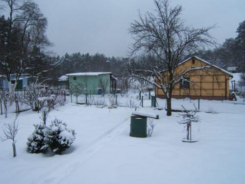Działki zimową porą #Działka #ogródki