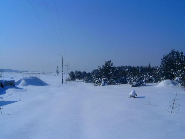 Zima w Osieku/k.Olkusza #drzewa #działka #gladz #gładkośc #gładź #ŁadnyDzień #mroz #mróz #natura #niebo #piękno #pole #połac #slonce #słońce #snieg #spokój #szron #widok #zaspy #zima