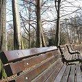 Park-Krzyki #park #drzewo #ławka